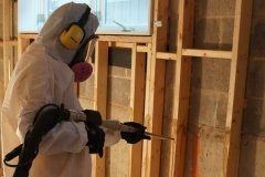 Mold Remediation Project