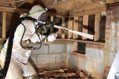 mold-remediation-3