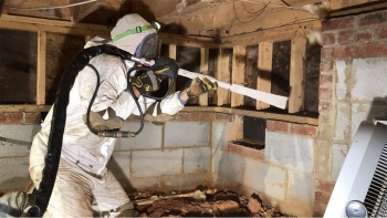 mold-remediation-3